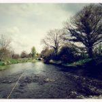 Camowen River (Edenderry)